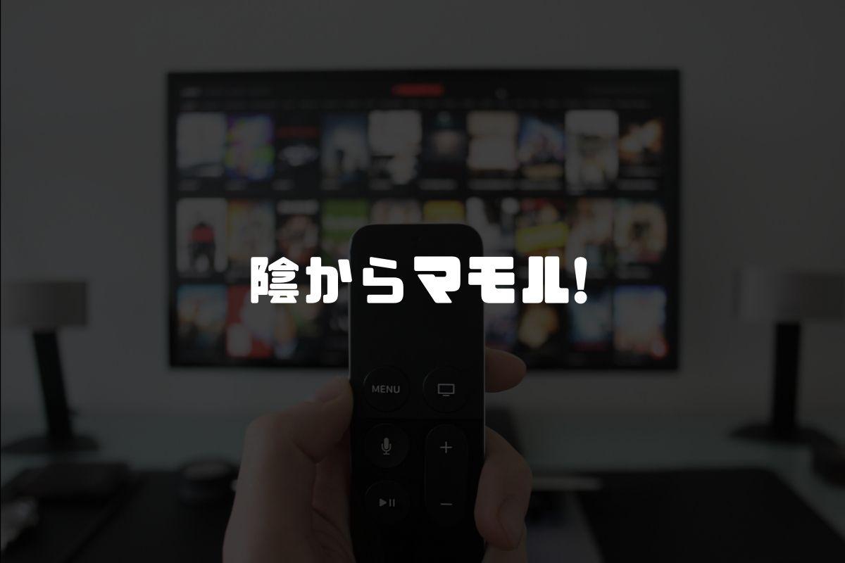 アニメ 陰からマモル! 続編