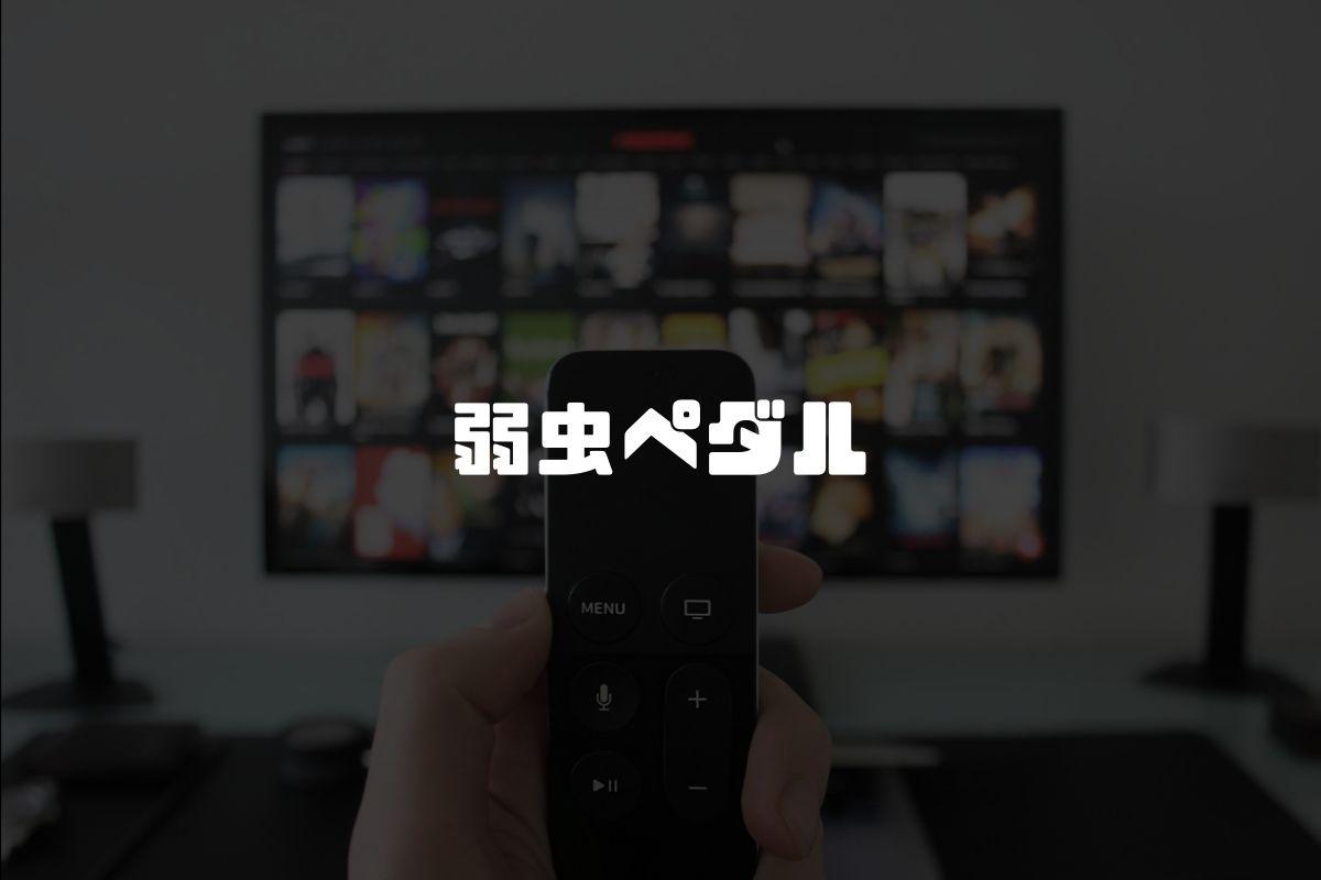 アニメ 弱虫ペダル 続編