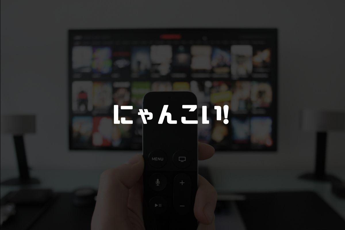 アニメ にゃんこい! 続編