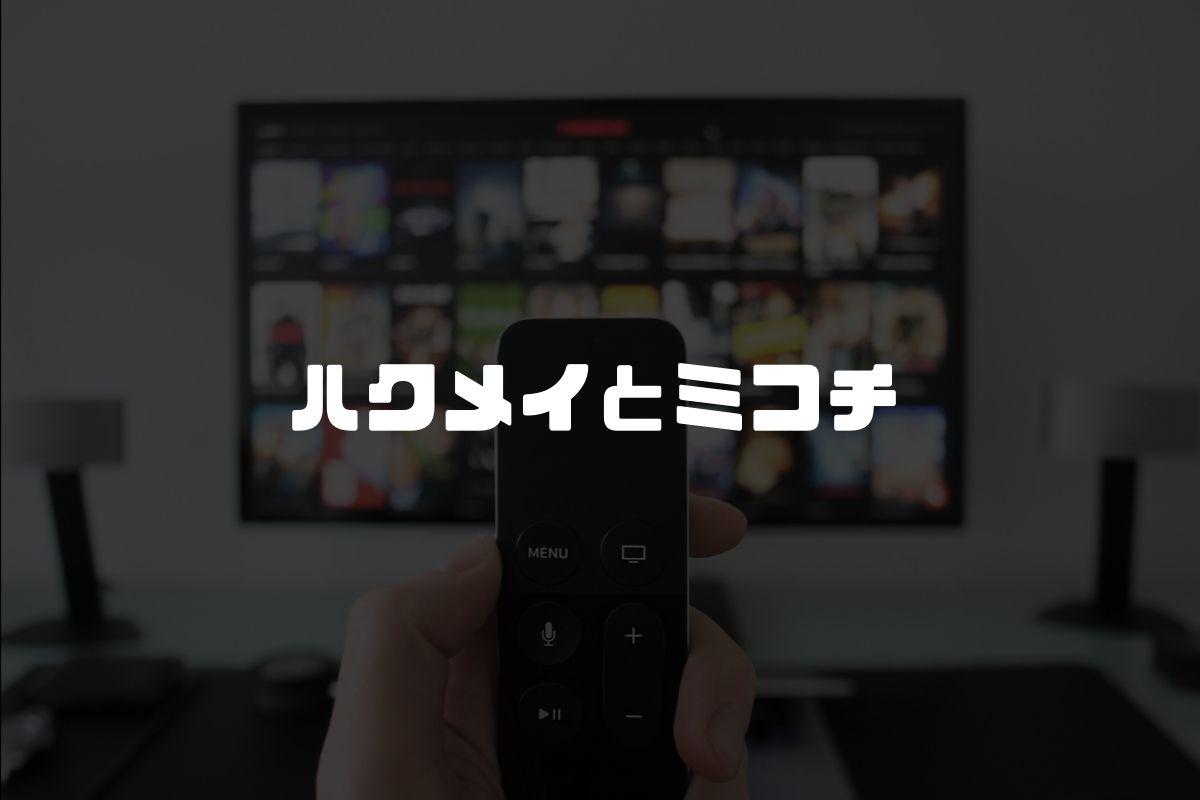 アニメ ハクメイとミコチ 続編
