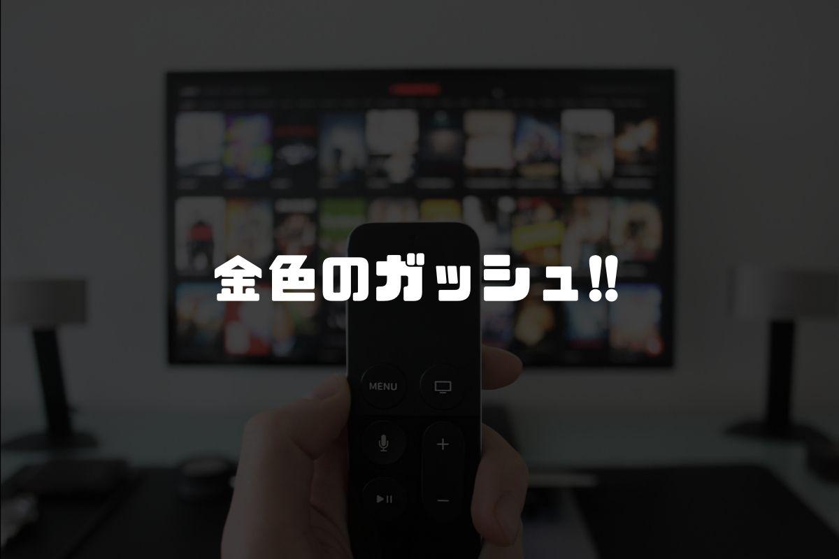 アニメ 金色のガッシュ!! 続編