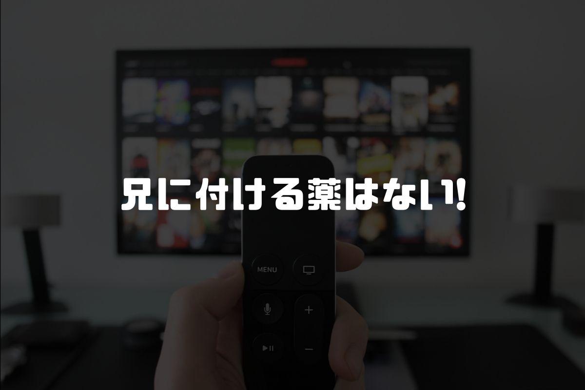 アニメ 兄に付ける薬はない! 続編