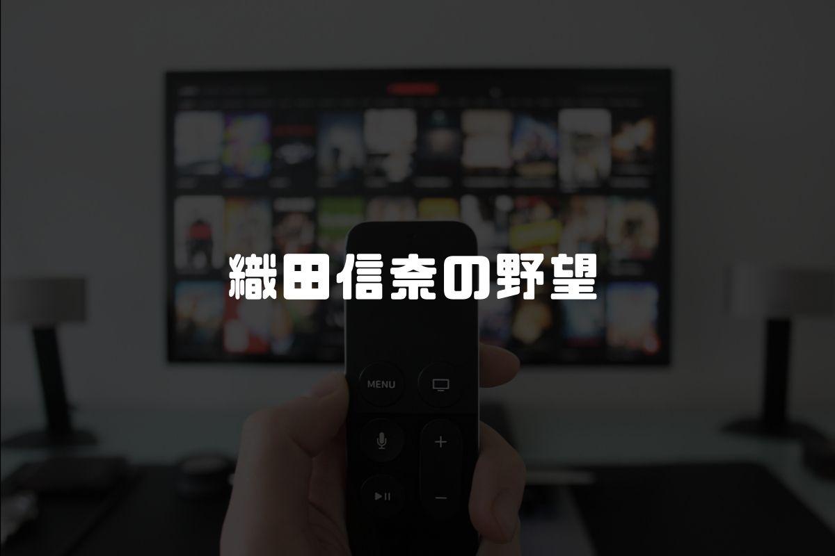 アニメ 織田信奈の野望 続編