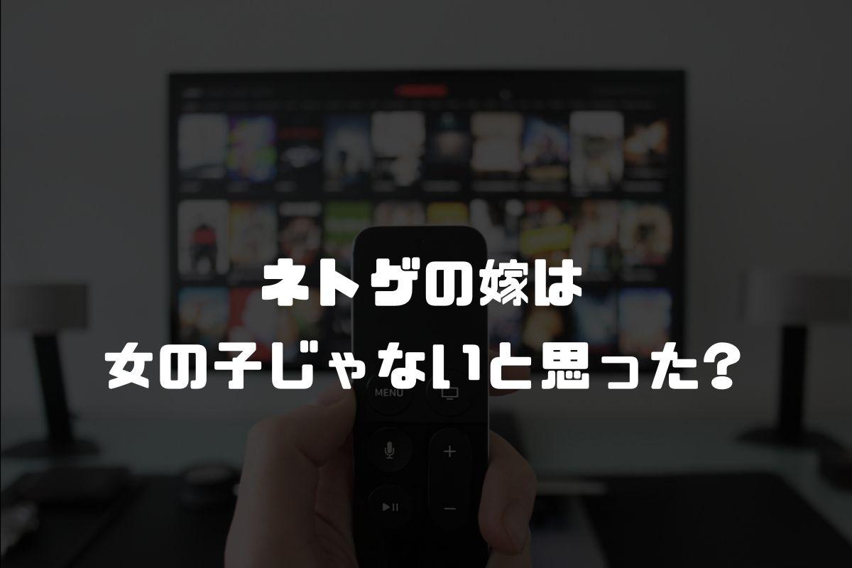 アニメ ネトゲの嫁 続編