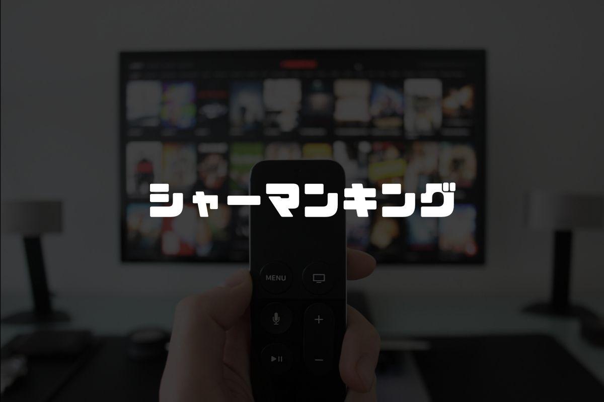 アニメ シャーマンキング 続編