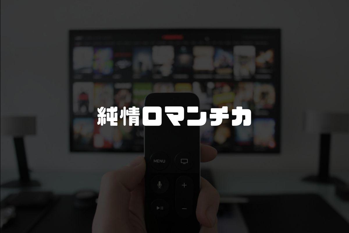 アニメ 純情ロマンチカ 続編